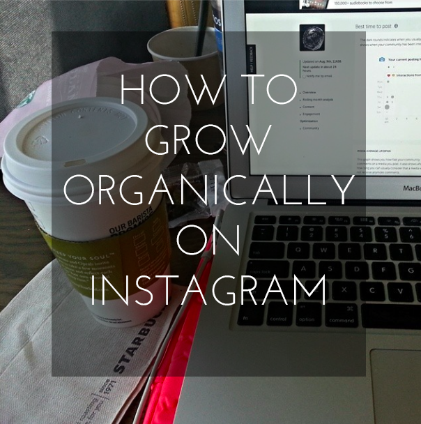 How to Grow Organically on Instagram [Organic Networking]